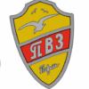 наклейка эмблема пермский велозавод 2